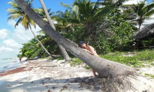 Zdjecie DOMINIKANA / Saona / Saona / SAONA- Dominikana