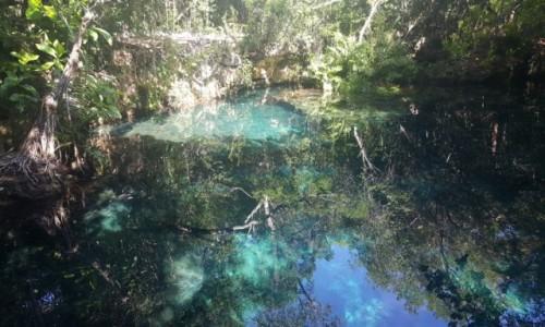 Zdjecie DOMINIKANA / Dominikana / Dominikana / Oczko wodne w dżungli ... krystalicznie czysta woda