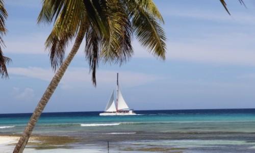 Zdjecie DOMINIKANA / Saona Island / Saona Island / Dominikana