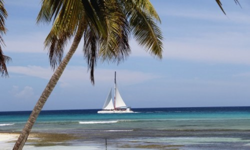 DOMINIKANA / Saona Island / Saona Island / Dominikana