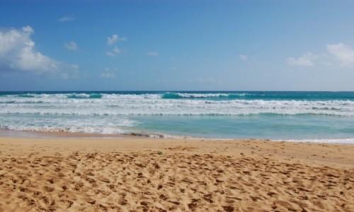 Zdjecie DOMINIKANA / Dominikana / Macao / Playa Macao, Dominikana