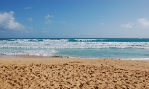 Zdjęcie DOMINIKANA / Dominikana / Macao / Playa Macao, Dominikana