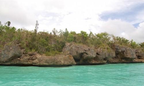 Zdjecie DOMINIKANA / Dominikana / East National Park / Parque Nacional Del Este, Dominikana