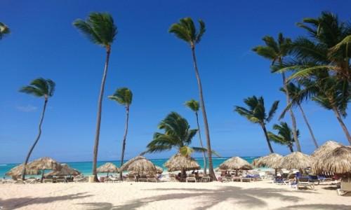 Zdjecie DOMINIKANA / Dominikana / Punta Cana / ¡Bienvenidos! a Punta Cana, Dominikana