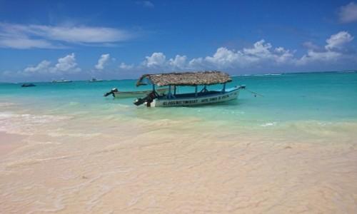 Zdjęcie DOMINIKANA / Dominikana / Punta Cana / Punta Cana, Dominikana