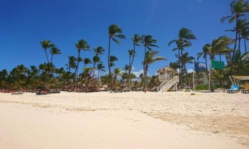 Zdjecie DOMINIKANA / Dominikana / Punta Cana / La Playa en Punta Cana