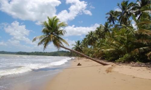Zdjecie DOMINIKANA / Dominikana / Dominikana / Plaża daleko od kurortów