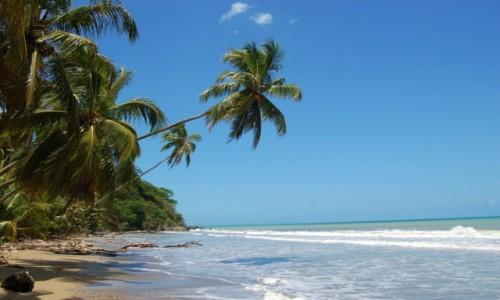 Zdjecie DOMINIKANA / Dominikana / Dominikana / Spacerkiem po bezludnej plaży
