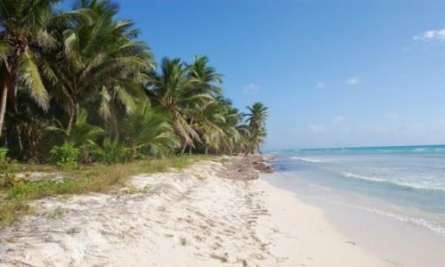 Zdjecie DOMINIKANA / La Altagracia / Saona / Wybrzeże Saony, Republika Dominikańska
