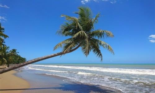 Zdjecie DOMINIKANA / El Seibo / Playa Abajo / Playa Abajo - z dala od kurortów