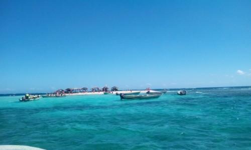 Zdjecie DOMINIKANA / Peerto Plata / wyspa Cayo Arena / wyspa Cayo Arena
