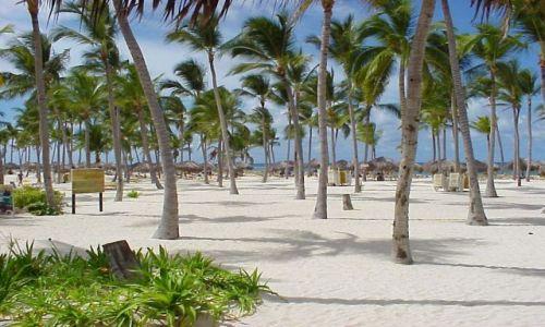 Zdjecie DOMINIKANA / Punta Cana / Isla Saona plaza / Isla saona