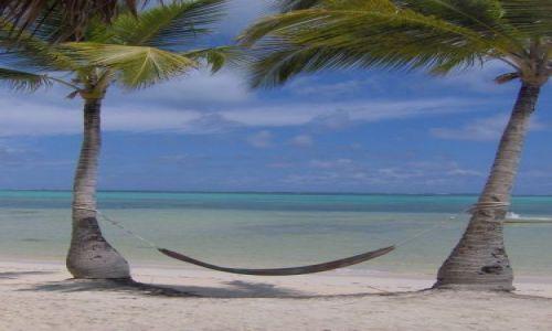 Zdjęcie DOMINIKANA / Punta Cana / Bavaro /