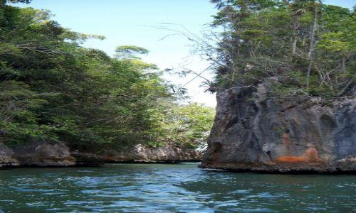 Zdjęcie DOMINIKANA / Park Narodowy Los Haitises / Park Narodowy Los Haitises / Widoczek