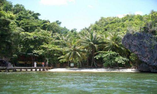 Zdjęcie DOMINIKANA / Park Narodowy Los Haitises / Park Narodowy Los Haitises / Widok na brzeg