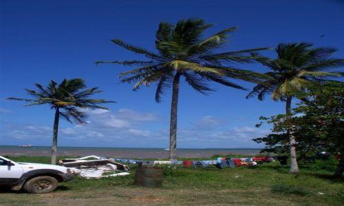 Zdjecie DOMINIKANA / Park Narodowy Los Haitises / okolice Parku Narodowego Los Haitises / Widok z okna restauracji