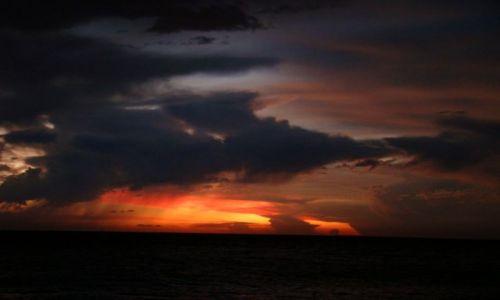 Zdjecie DOMINIKANA / Bayahibe / plaża / Zachód słońca