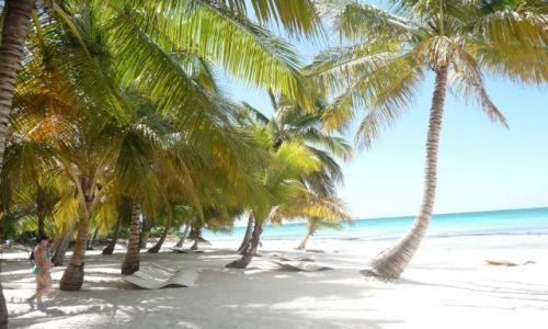 Zdjecie DOMINIKANA / Morze Karaibskie / Wyspa Saona / Białe piaski