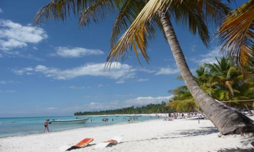 Zdjęcie DOMINIKANA / Morze Karaibskie / Wyspa Saona / Wyspa saona