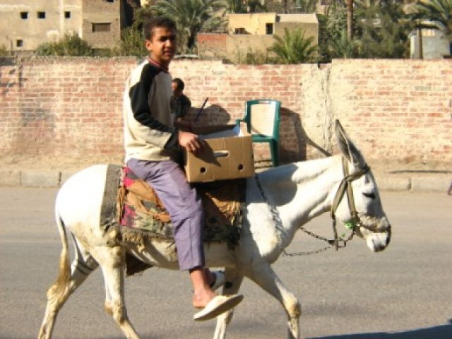 Zdjęcia: Kair, transport w Egipcie, EGIPT