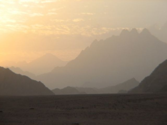 Zdjęcia: oaza, Sahara, EGIPT