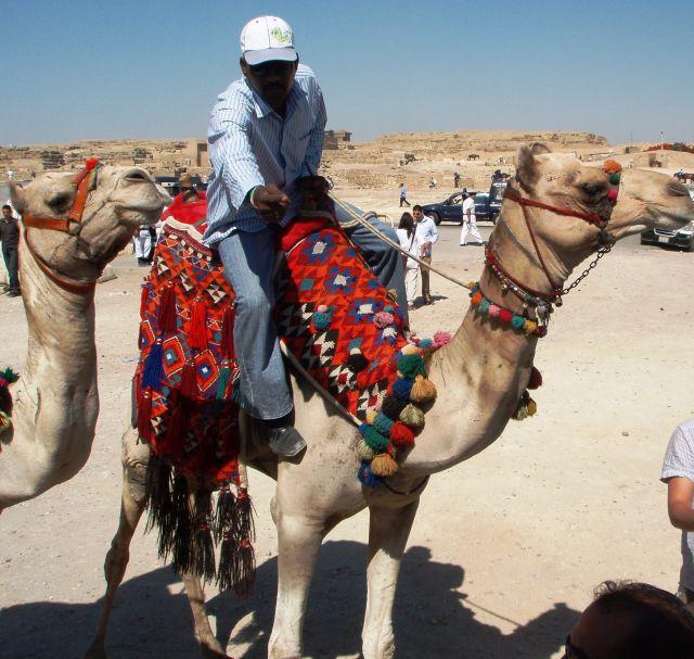 Zdjęcia: przed piramidami, Giza, Biznes przed piramidami, EGIPT