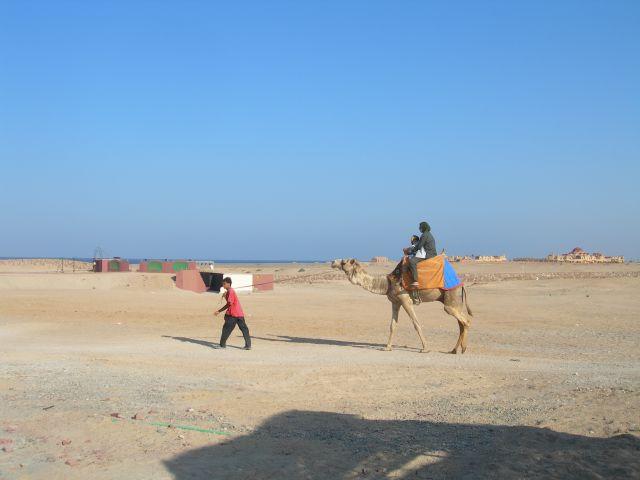 Zdjęcia: El Quseir, Do Domu, EGIPT