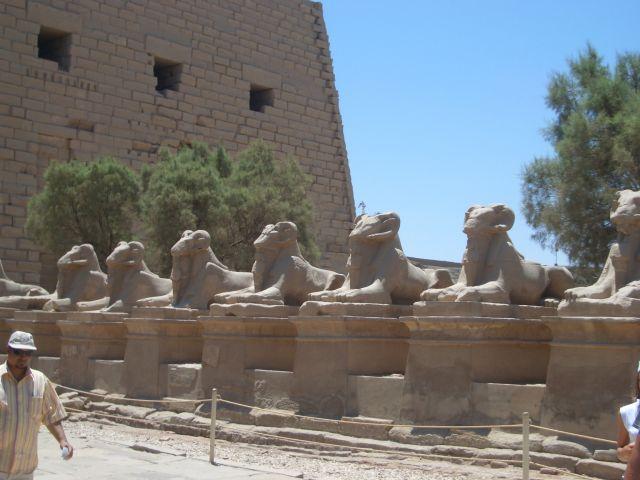 Zdjęcia: Luxor, Luxor, EGIPT