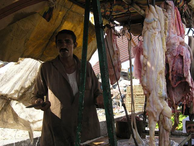 Zdjęcia: Ismailia, Ismailia, EGIPT
