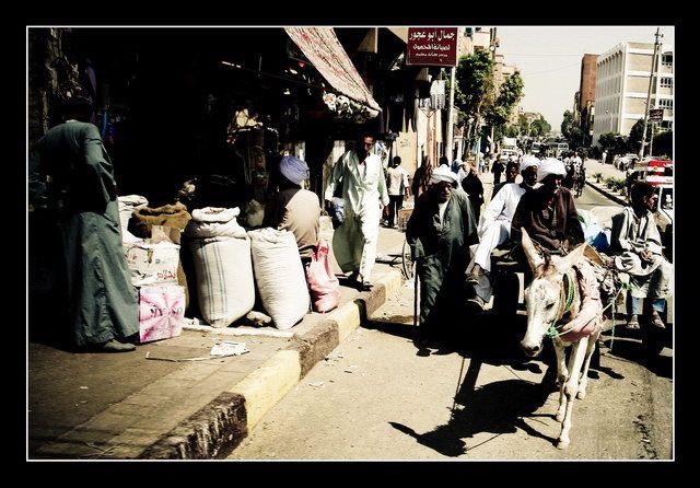 Zdjęcia: Thebes, Thebes' road, EGIPT