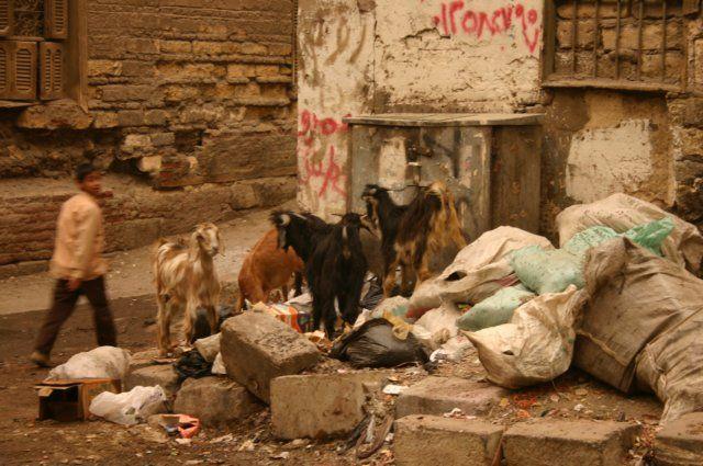 Zdjęcia: Jakiś zaułek, Kair, W biegu, EGIPT
