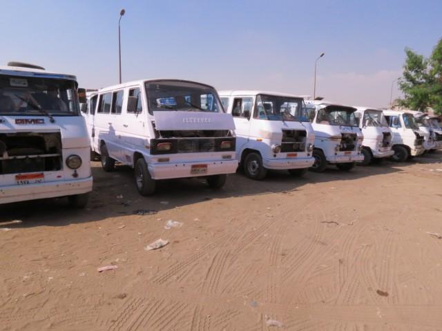 Zdjęcia: Kair, Afryka, Kebda Camel 2, EGIPT