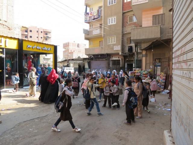 Zdjęcia: Kair, Afryka, Kebda Camel 9, EGIPT
