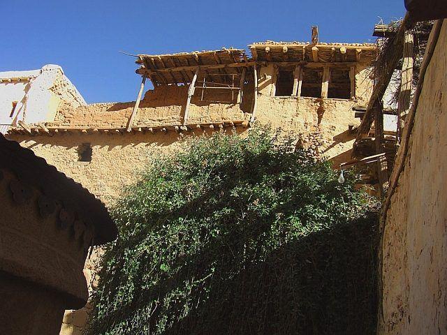 Zdjęcia: Klasztor Św. Katarzyny, Półwysep Synaj, Klasztor Św. Katarzyny - biblijny krzew gorejący, EGIPT