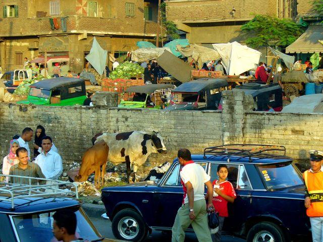 Zdjęcia: Kair, ., EGIPT