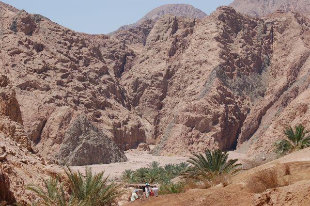 Zdjęcia: Dahab, Oaza , EGIPT
