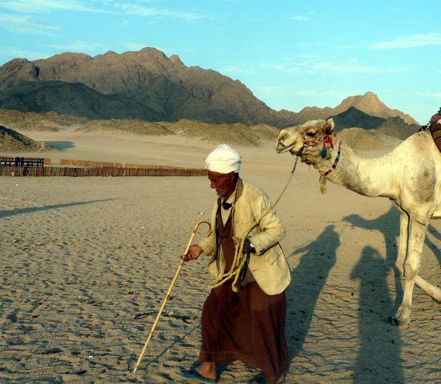 Zdjęcia: Okolice Hurghady, Afryka, Beduin z wielbłądem, EGIPT