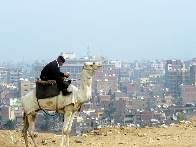 Zdjęcia: Kair, Afryka, Policjant na wielbłądzie, EGIPT