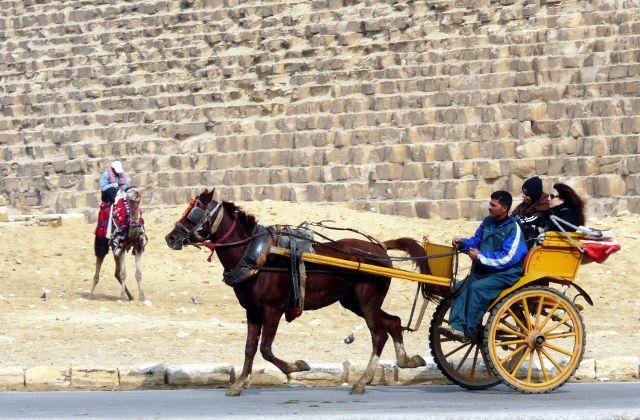 Zdjęcia: Kair/Giza, Afryka, Pod piramidami 01, EGIPT