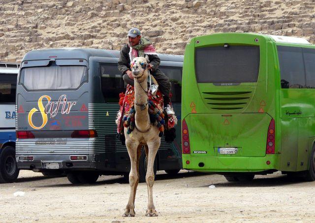 Zdjęcia: Kair/Giza, Afryka, Pod piramidami 02, EGIPT