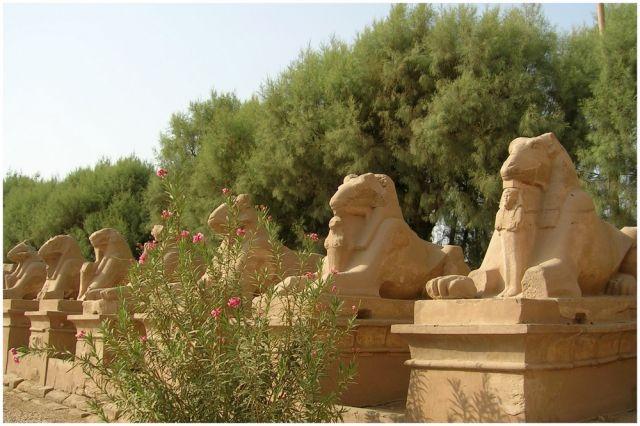 Zdjęcia: Karnak, Egipt część wschodnia, Aleja Sfinksów, EGIPT