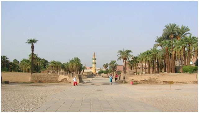 """Zdjęcia: Luxor, Egipt część wschodnia, Palmy i """"starocie"""", EGIPT"""
