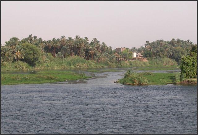 Zdjęcia: Nil, Egipt część południowa, Typowy  krajobraz  nad Nilem, EGIPT