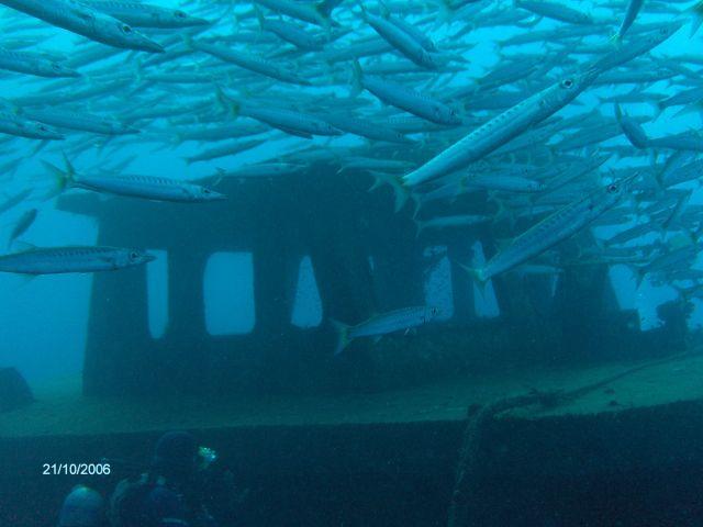 Zdjęcia: Hurghada, Wrak statku w morzu czerwonym, EGIPT