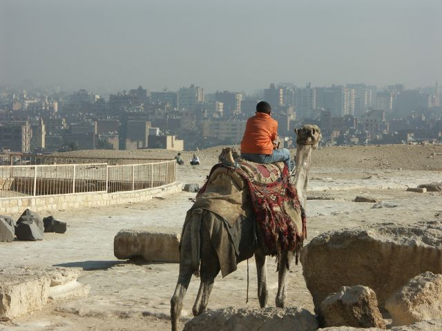 Zdjęcia: Kair, zaduma, EGIPT