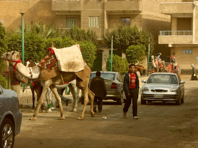 Zdjęcia: kair, spacer, EGIPT