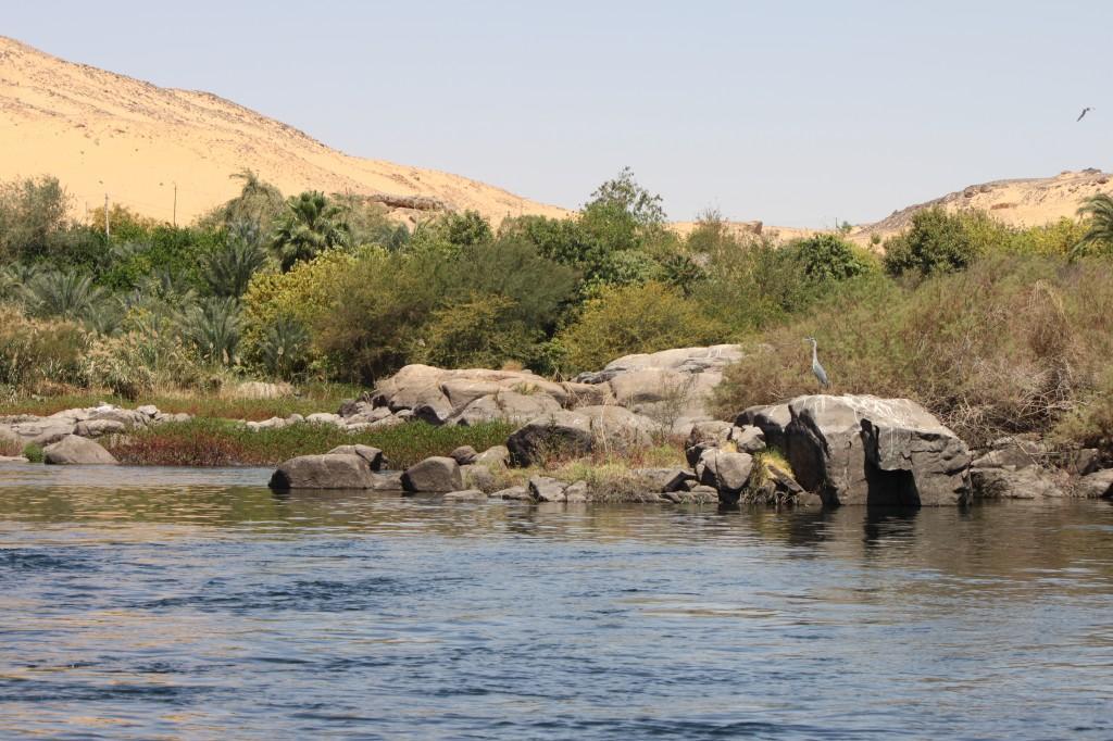 Zdjęcia: Park krajobrazowy I katarakty, Assuan, Piasek, zieleń i błękit, EGIPT