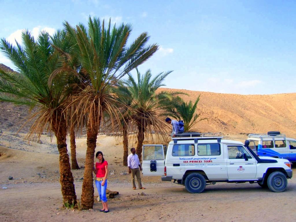 """Zdjęcia: Pustynia, Hurghada, Konkurs """"Tam wrócę""""  Wyjątkowa oaza na pustyni. , EGIPT"""