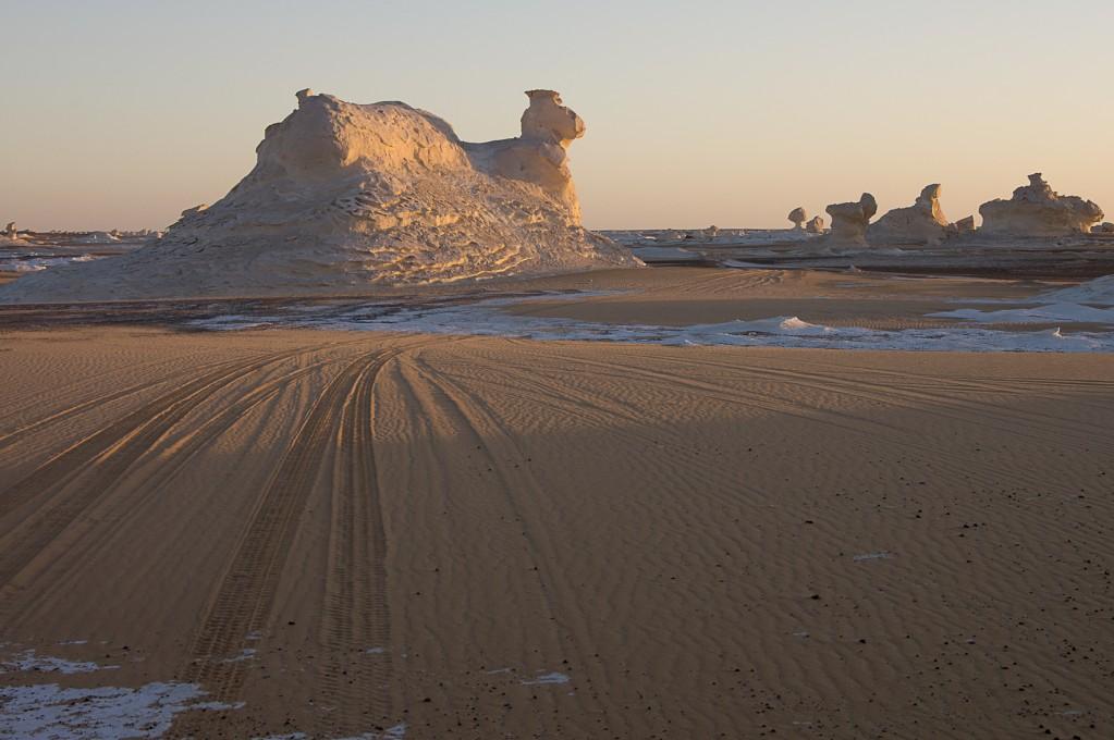 Zdjęcia: Biała Pustynia, Sahara, Wielbłąd, EGIPT