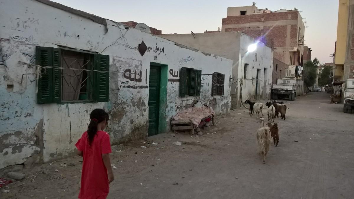 Zdjęcia: Hurgarda, Hurgarda, Prawdziwa Hurgarda, EGIPT